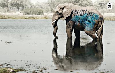 Garffitis elefánt