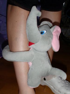 Elefánt takaróval
