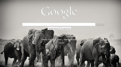 Elefántos google háttér