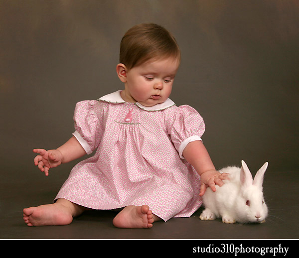 easter bunny portrait sessions by amanda dengler in north carolina photos pictures with bunnies