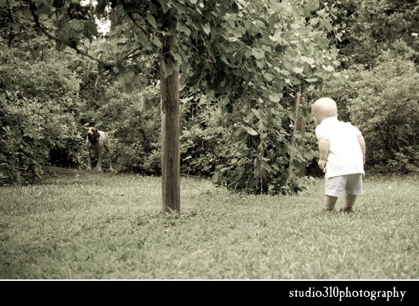 raleigh nc family photography by studio 310