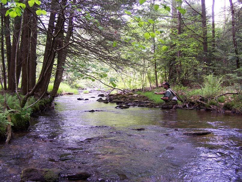 Ribolov na fotkama - Page 3 The+Fishing+Creek+in+Pennsylvania
