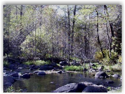 A rainx top 5 bass fishing locations for Fishing in phoenix arizona