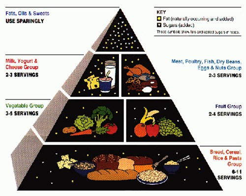Healthy Food Pyramid Worksheets. HEALTHY FOOD PYRAMID WORKSHEET