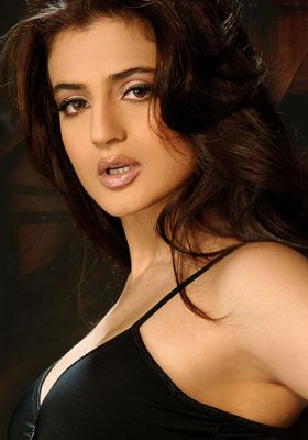 Amisha Patel Hot And Sexy Photos