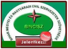 BINCISZ
