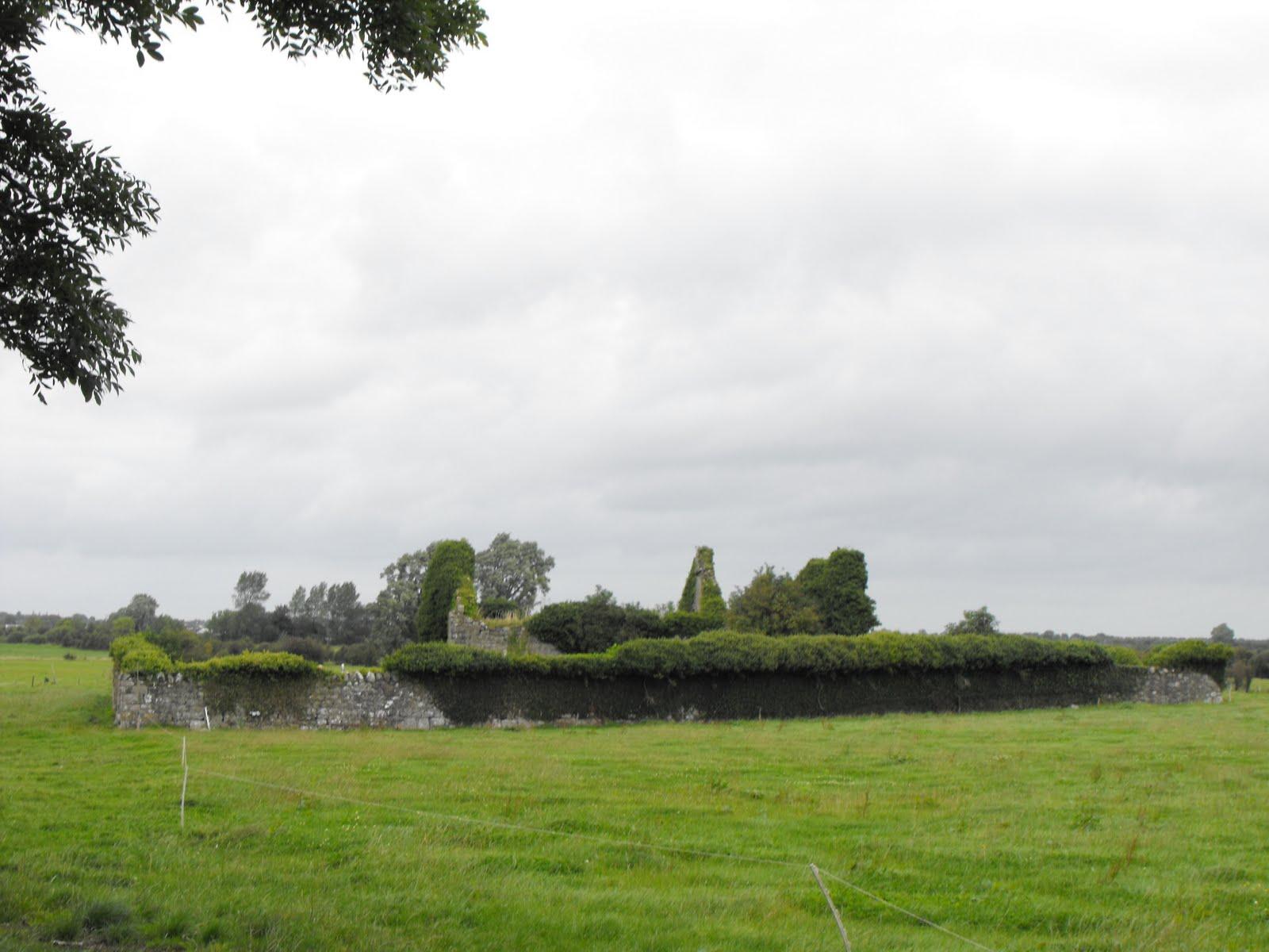 Ruiner i Lynally