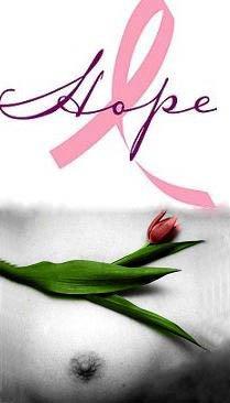 ¡Stop Cancer de Mama!