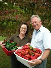 Harvest Thyme Herbs