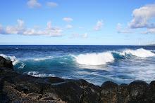 Mar hidalgo