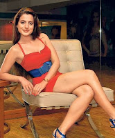 Amisha patel saree wallpapers
