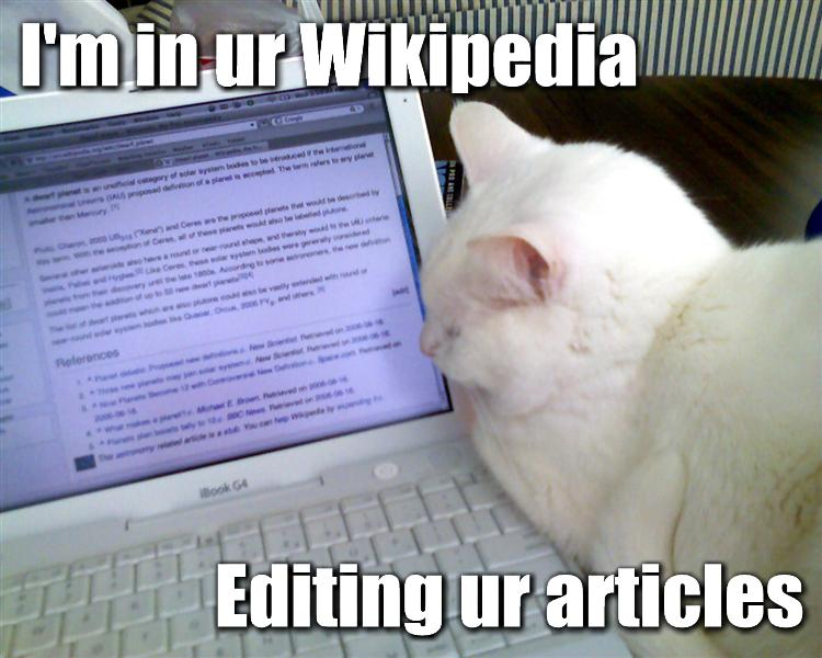 funny cat picture - funny cat pictures-wikipedia-lolcat