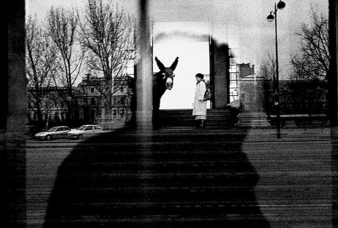 robert frank photography essay