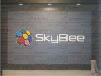 Nonton Bola dari TV Hybrid SkyBee 60AL