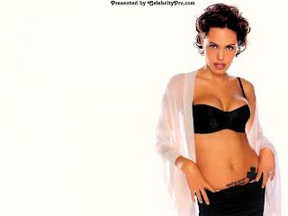Bikini Wallpapers With Image Angelina Jolie Bikini Wallpaper Picture 1