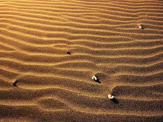 Free Desktop Wallpapers With Image Desert Landscape Wallpaper Picture 10