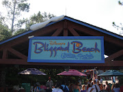 We decided to go to Blizzard Beach today. It was the perfect weather. (dsc )