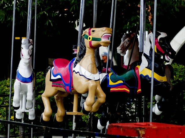 carousel horses in collingwood, ont