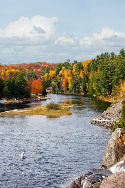 Muskoka River near Bracebridge and the High Falls park area