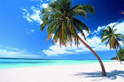 q provincia pertenece isla cabrera: