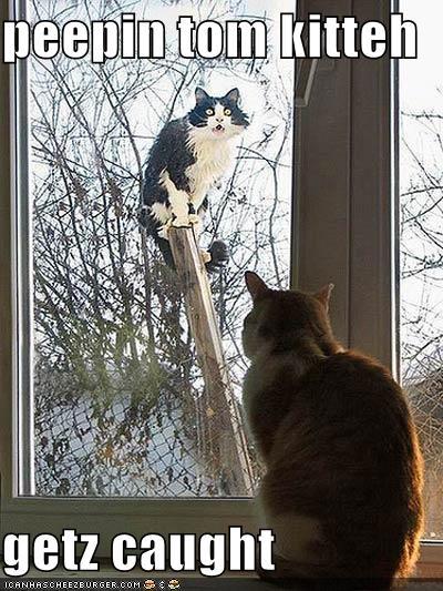 window peeping on men jerking off