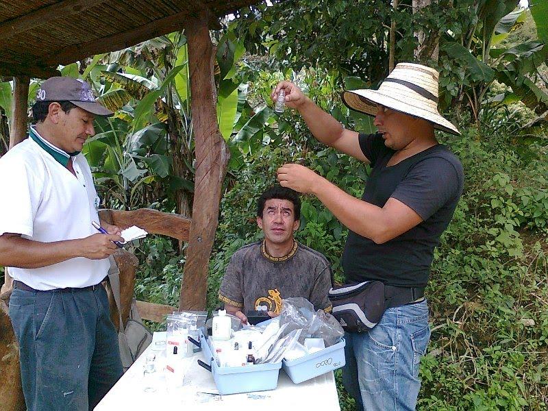 Jovenes rurales emprendedores en busca de la optimizaci n for Proyecto de piscicultura mojarra roja