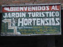 JARDÍN DE LAS HORTENCIAS