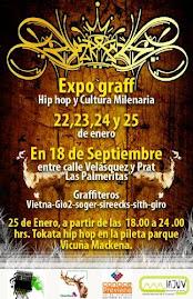 Aquí fotos de Expo Graff 2009