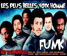 DJWAHID les plus belle voix homme funk