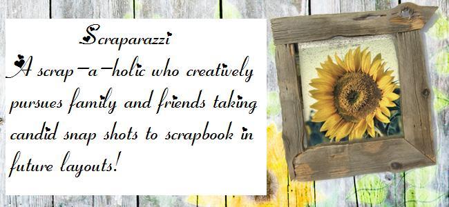 Scraparazzi Paper Crafts