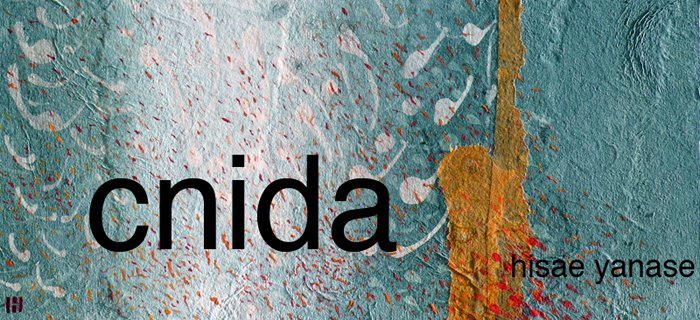 cnida