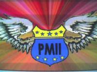 PMII Q