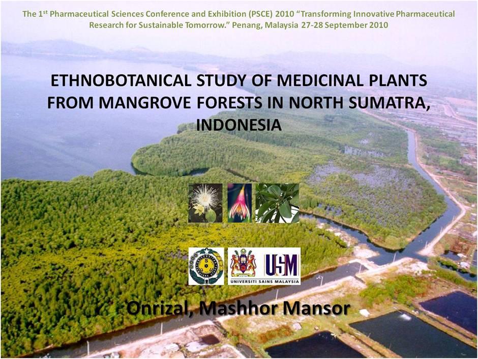 Importance of medicinal plants essay