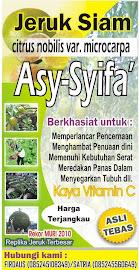 ASY-SYIFA' NAMA USAHA KAMI