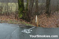 markings on the pavement and stakes along Newfound Gap Road