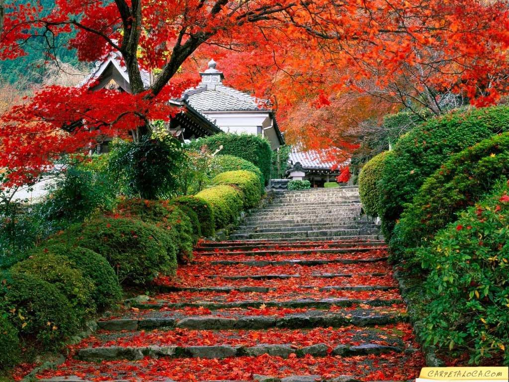 Imagenes De Paisajes Maravillosos - paisajes de fantasía. imagenes graciosas bonitas y
