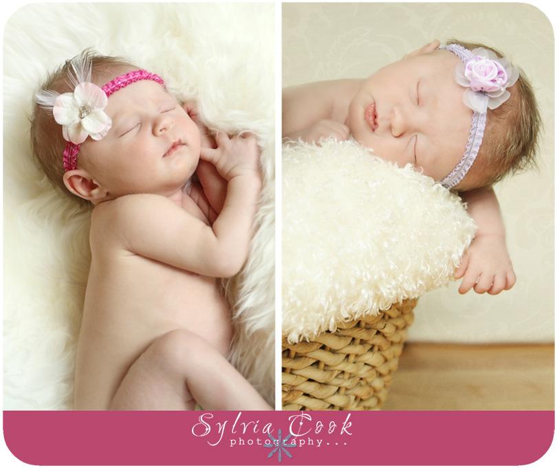 twin photographer,Seattle,newborn