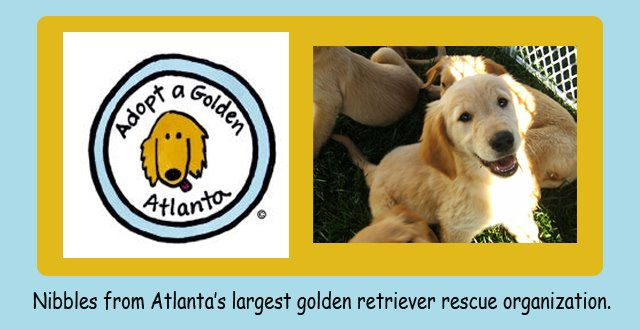 Adopt A Golden Atlanta