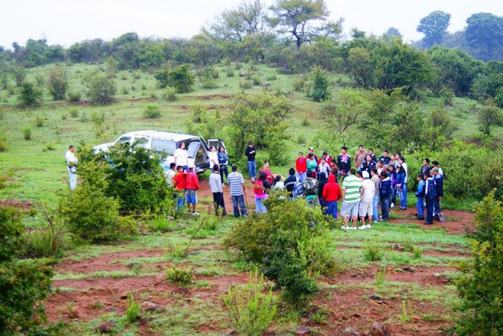 Temporada de Reforestacion 2010