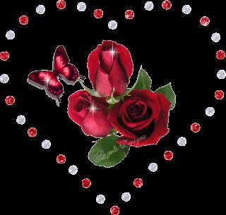 Fotos de flores y rosas para fondo de pantalla del celular y  - Imagenes De Rosas Rojas Para Descargar