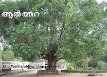 ബൂലോകത്തിലെ ഏക ആല്‍ത്തറ.