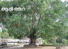 ബൂലോകത്തിലെ ഏക ആല്ത്തറ.