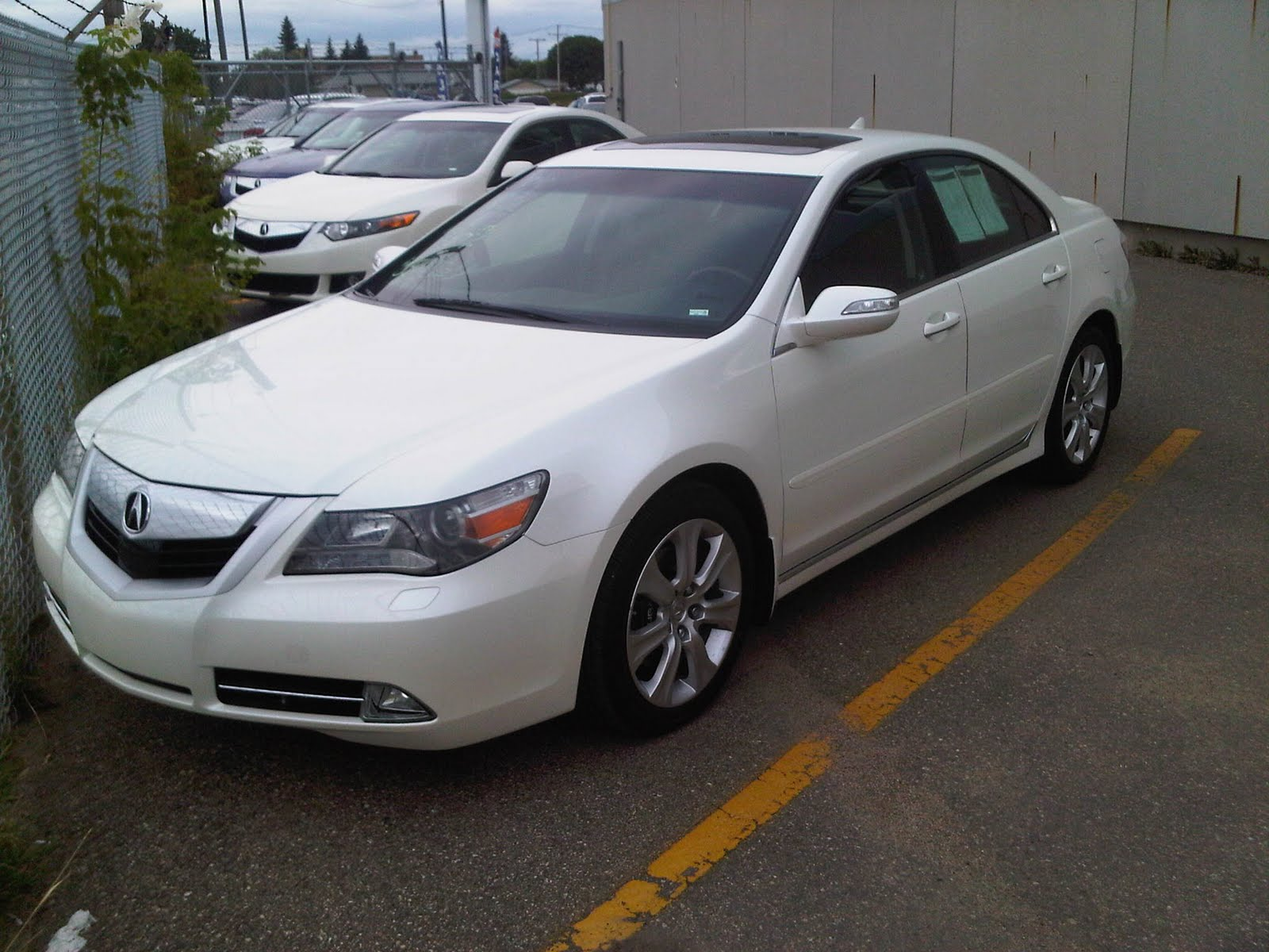 Acura Rl Elite on Acura Tsx