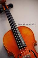 I Am a Violinsit :)