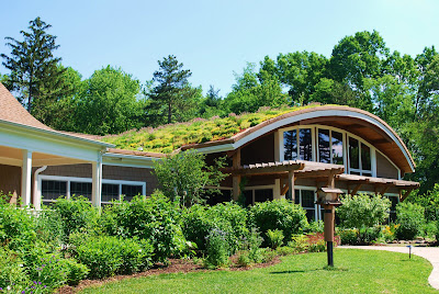 green+roof+03.jpg