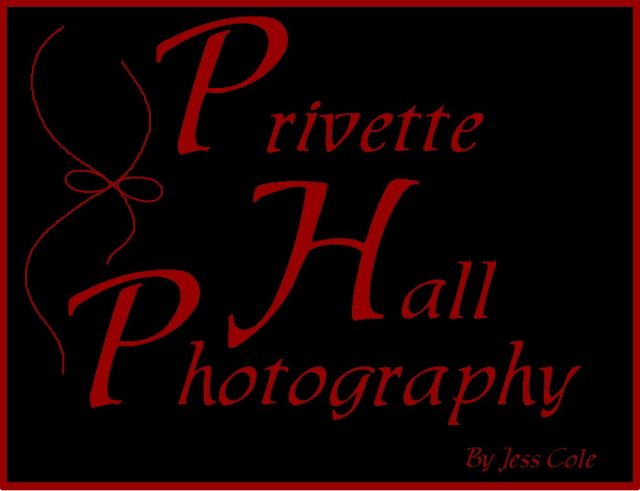 Privette Hall Photography