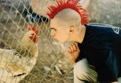 Punk and cock