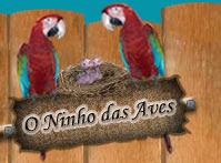 Ninho das aves