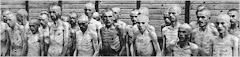 HOLOCAUSTO: PARA NO OLVIDAR Y DIFUNDIR
