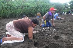 Costa Rica ecologica